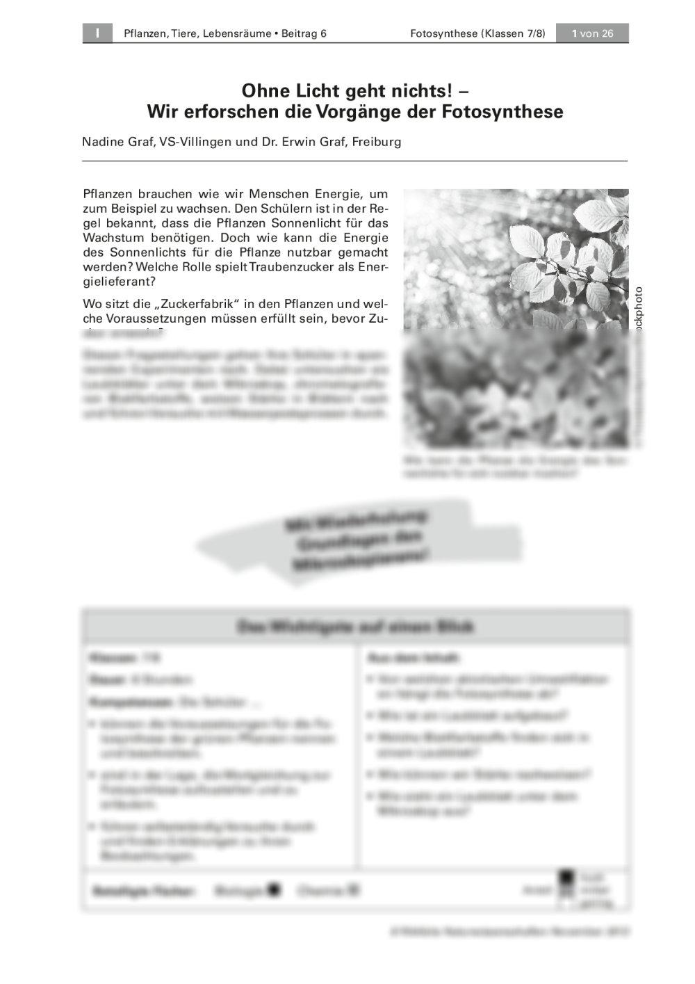 Fotosynthese - Seite 1