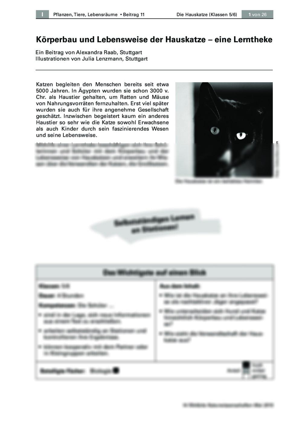 Die Hauskatze - Seite 1