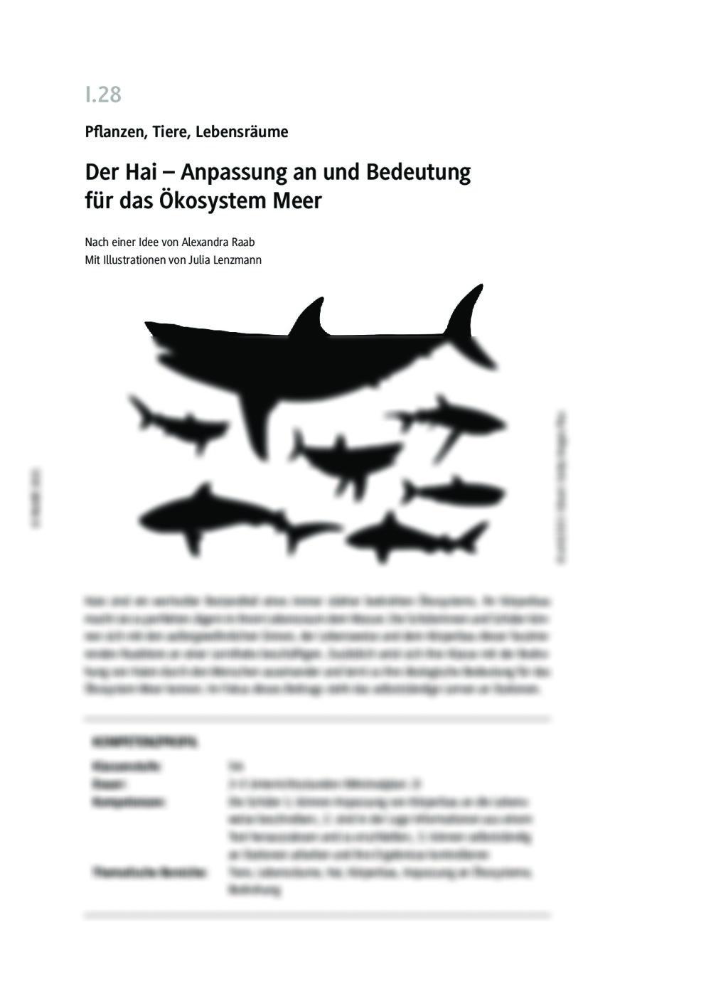 Der Hai - Seite 1