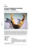 Der Homo-heidelbergensis-Unterkiefer von Mauer