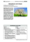 Blütenpflanzen und ihr Nutzen