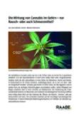 Die Wirkung von Cannabis im Gehirn