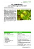 Die heimischen Baumarten Rosskastanie und Esskastanie