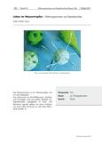 Mikroorganismen aus Papierkaschee