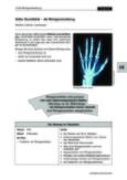Die Röntgenstrahlung